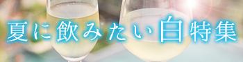 夏に飲みたい白特集!