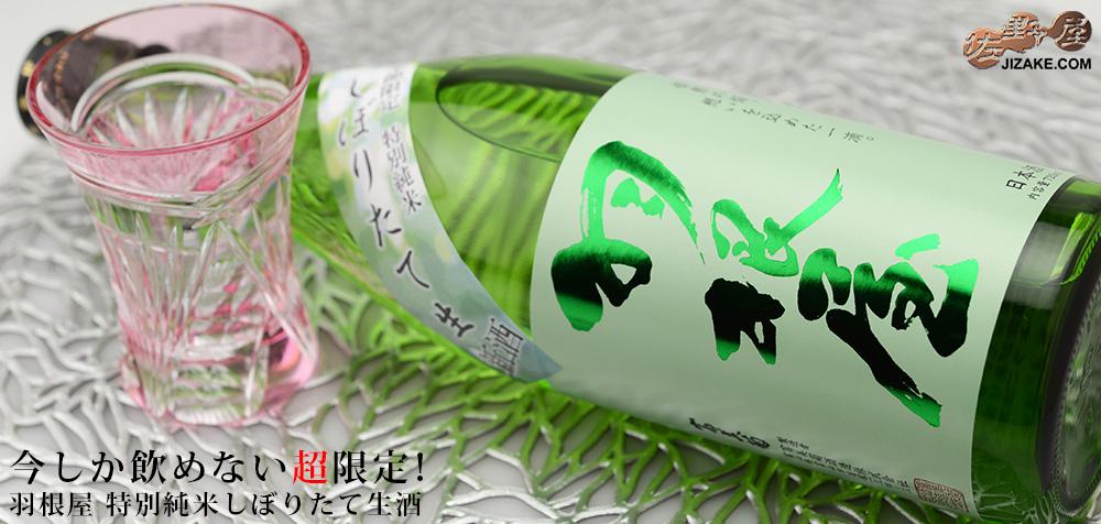 ◇羽根屋 特別純米しぼりたて生酒 1800ml