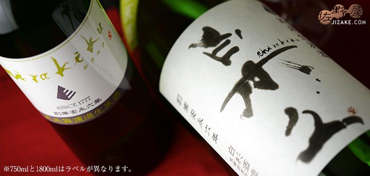 ◇白木久 純米無濾過生原酒 SHIRAKIKU 1800ml