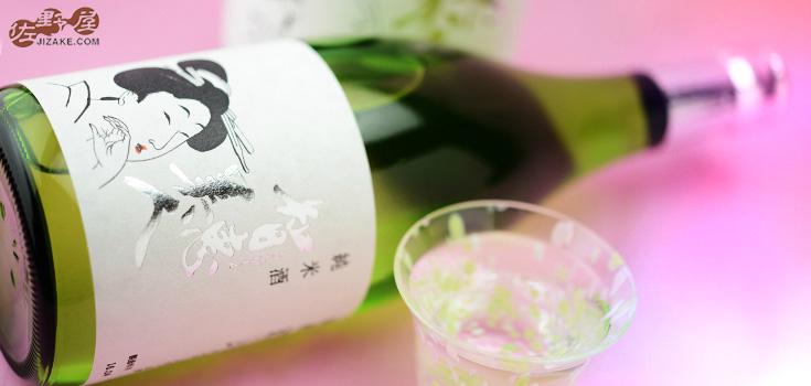 【箱入】智恵美人 純米酒 720ml