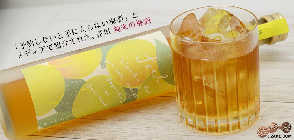花垣 純米梅酒 500ml