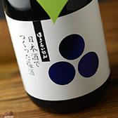 蓬莱泉 日本酒でつくった梅酒