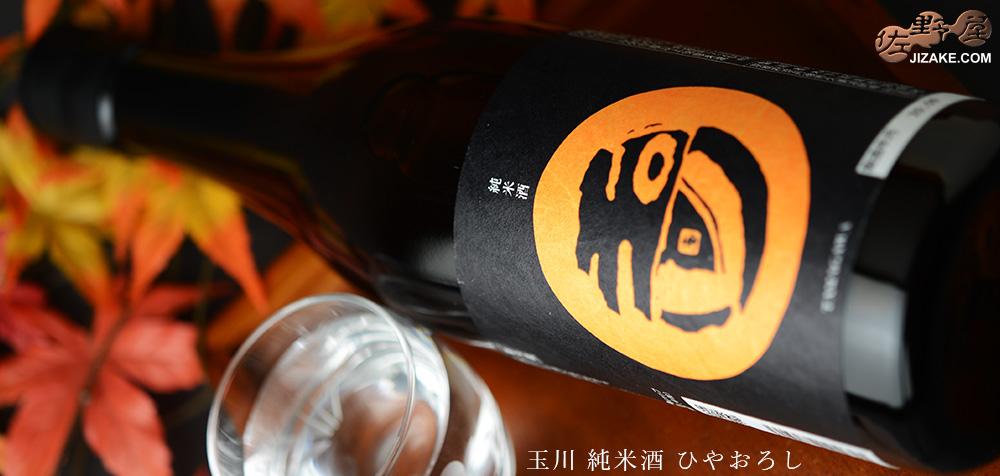 玉川 純米酒 ひやおろし 2019BY 720ml