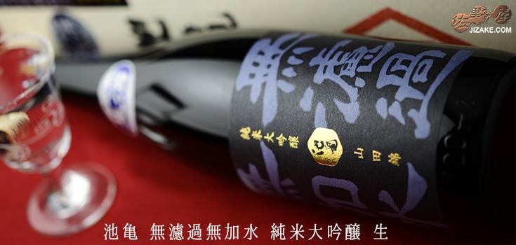 ◆【箱入】池亀 無濾過無加水 純米大吟醸 しぼりたて生酒 720ml
