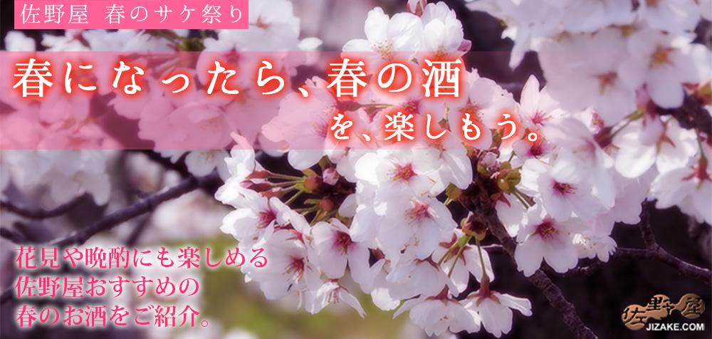 春になったら春の酒を楽しもう 花見 日本酒