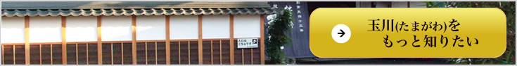 玉川(たまがわ) 日本酒 木下酒造